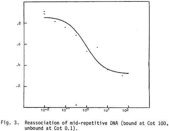 Reassociation kinetics of nuclear DNA